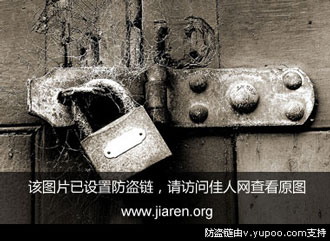 王波手中拿的是他2011年11月在郑州车展上发放的小广告